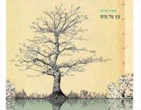 עמיר בניון - עץ על מים אלבום להורדה