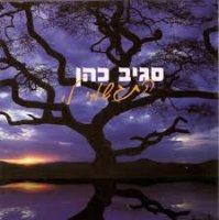 סגיב כהן - התגשמי לי אלבום להורדה